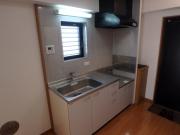グレースランド 208号室 キッチン