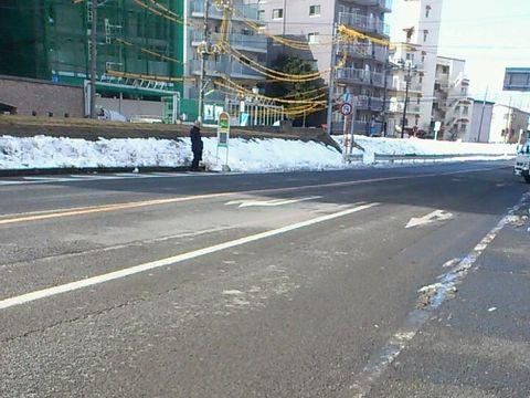 多摩堤通りの雪