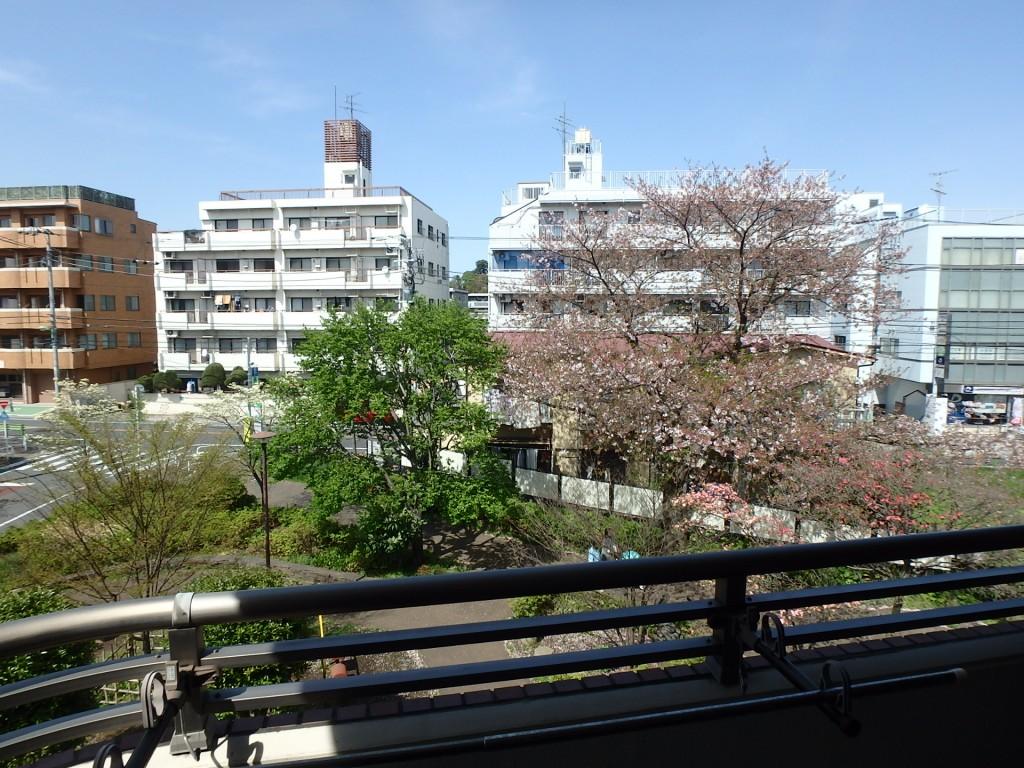 ガーデンパレス玉川 305 (11)