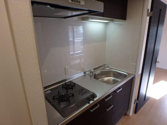 プレイス二子玉川301 キッチン2口